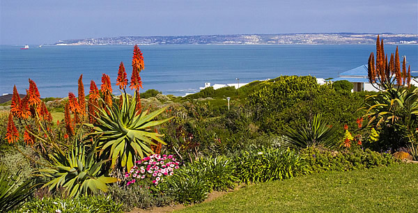 Image result for mosselbay tourism